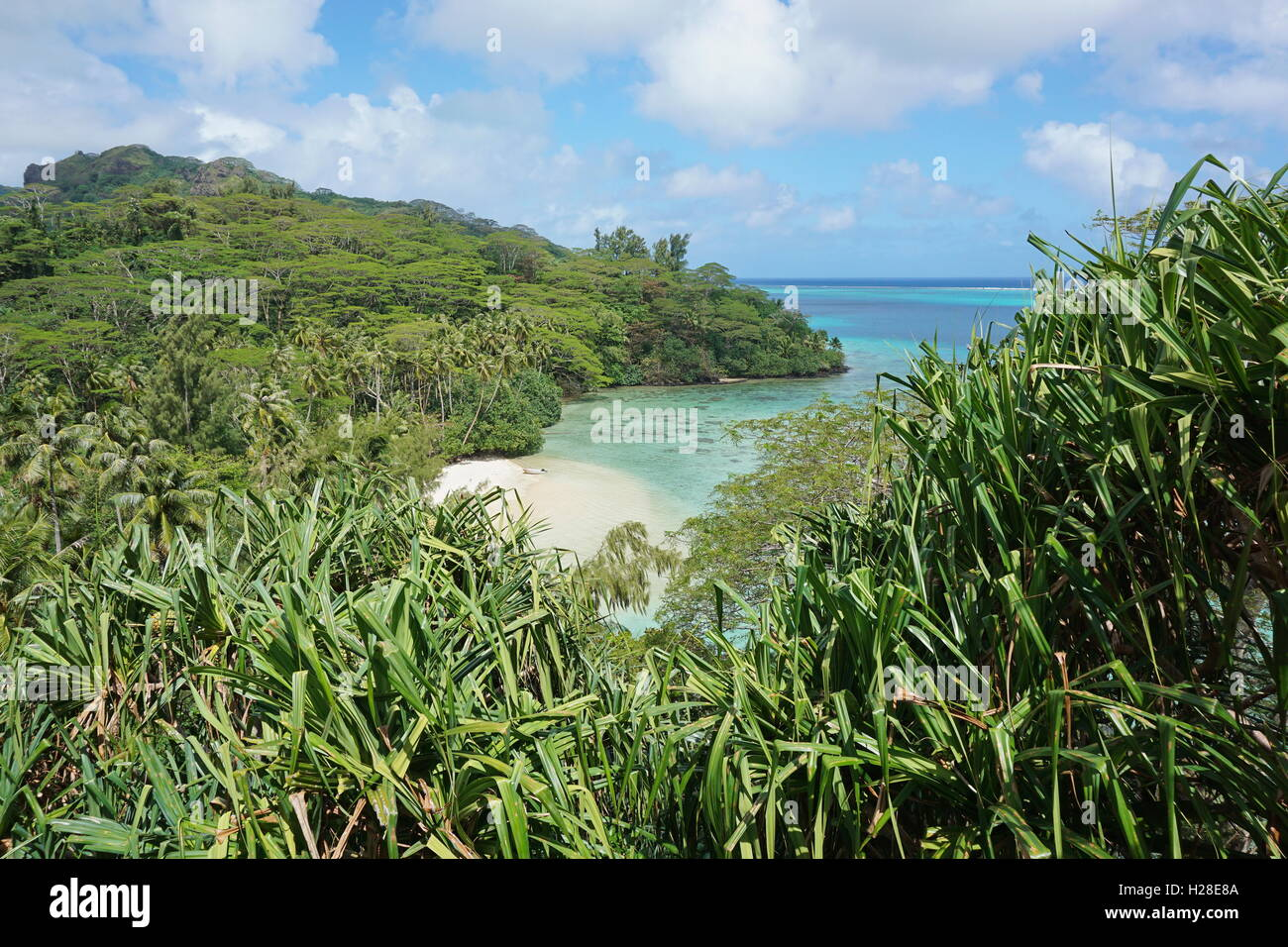 A secluded sandy beach with lush tropical vegetation, Huahine island, Pacific ocean, French Polynesia - Stock Image