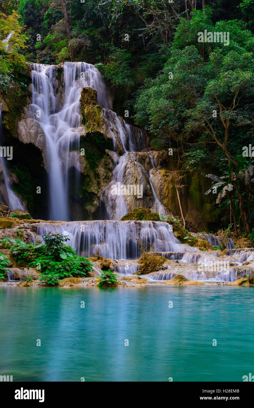 Kuang si water fall in Luang prabang,Laos. Stock Photo