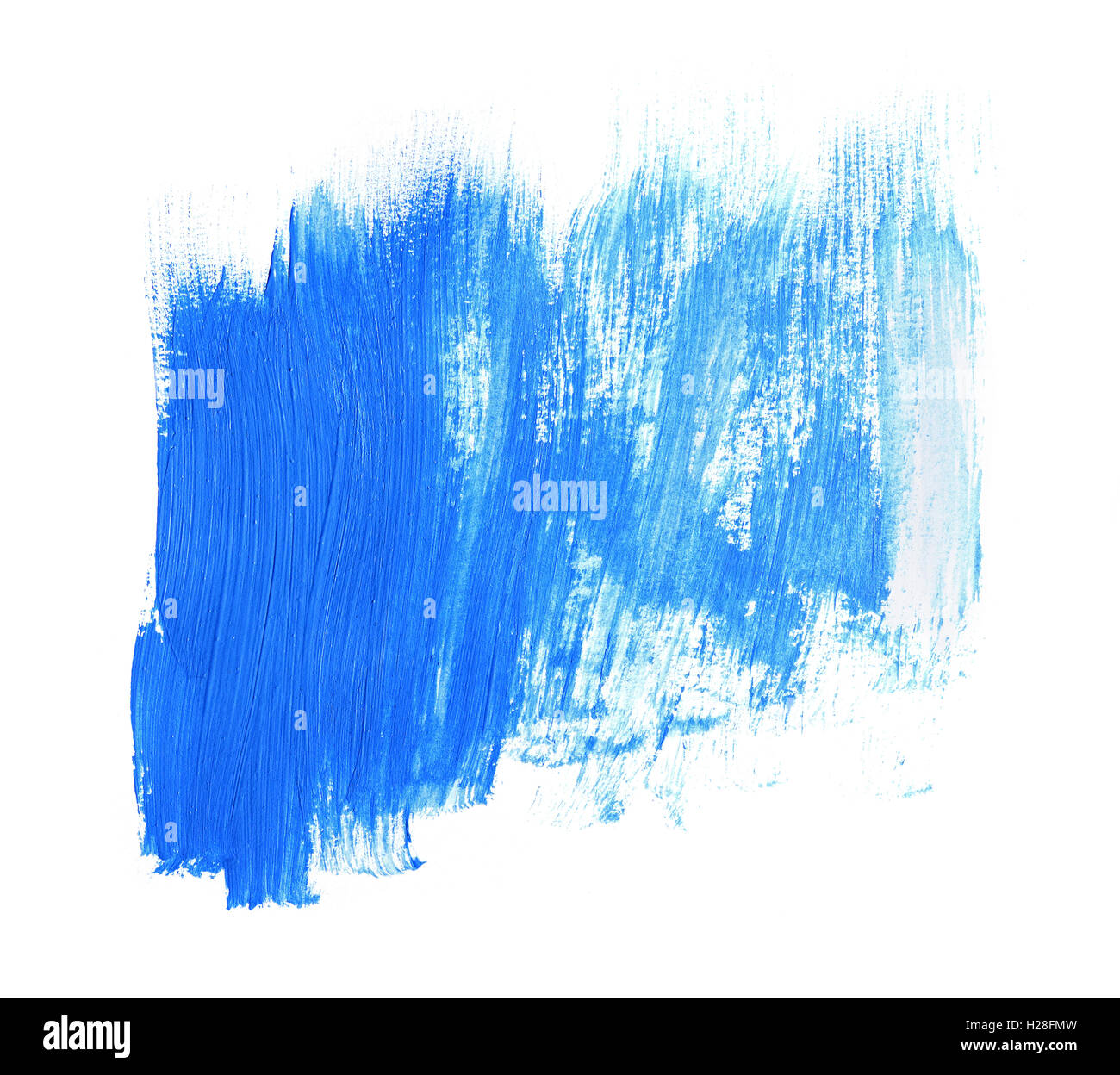 Paint brush stroke texture blue acrylic isolated on a white Stock