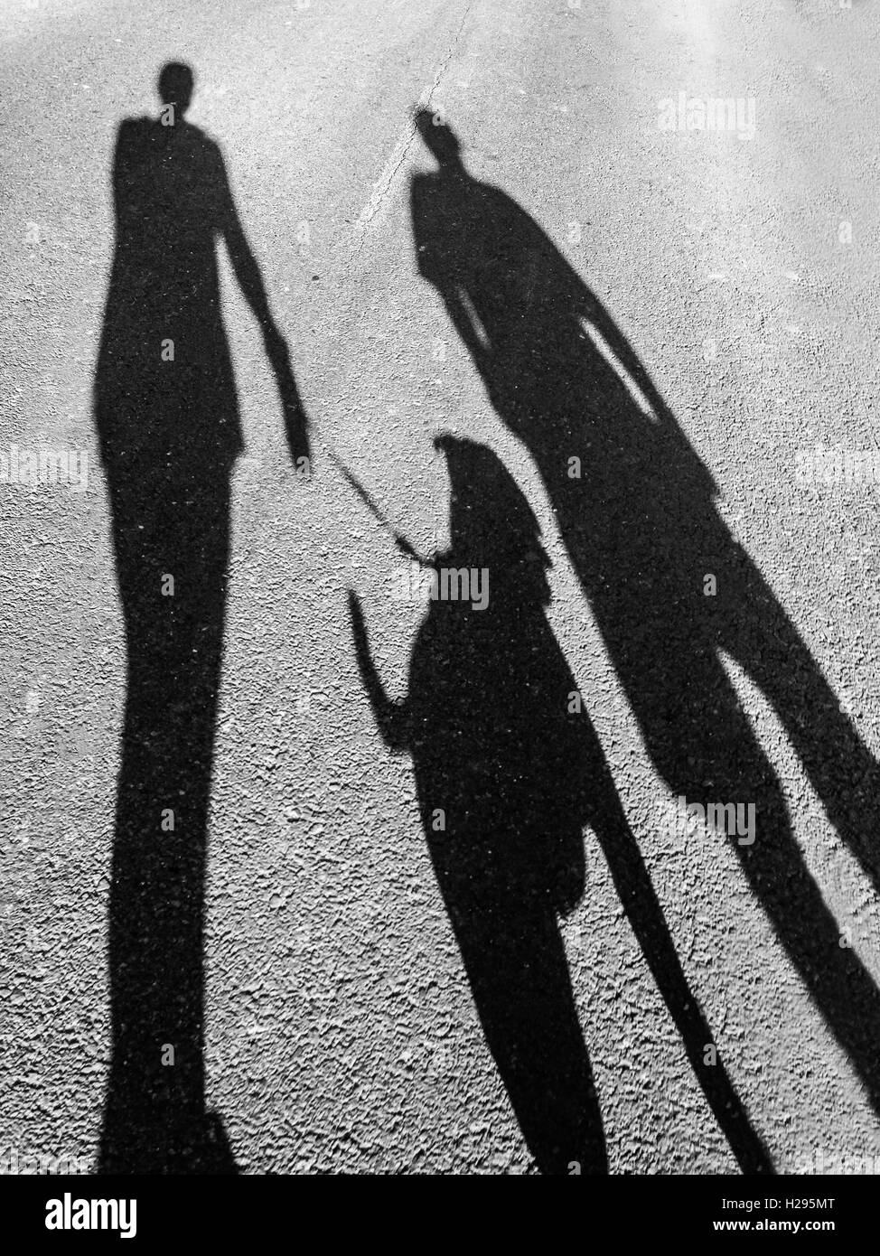The long shadows of two people walking a dog, Staffordshire Bull Terrier. mobilestock - Stock Image