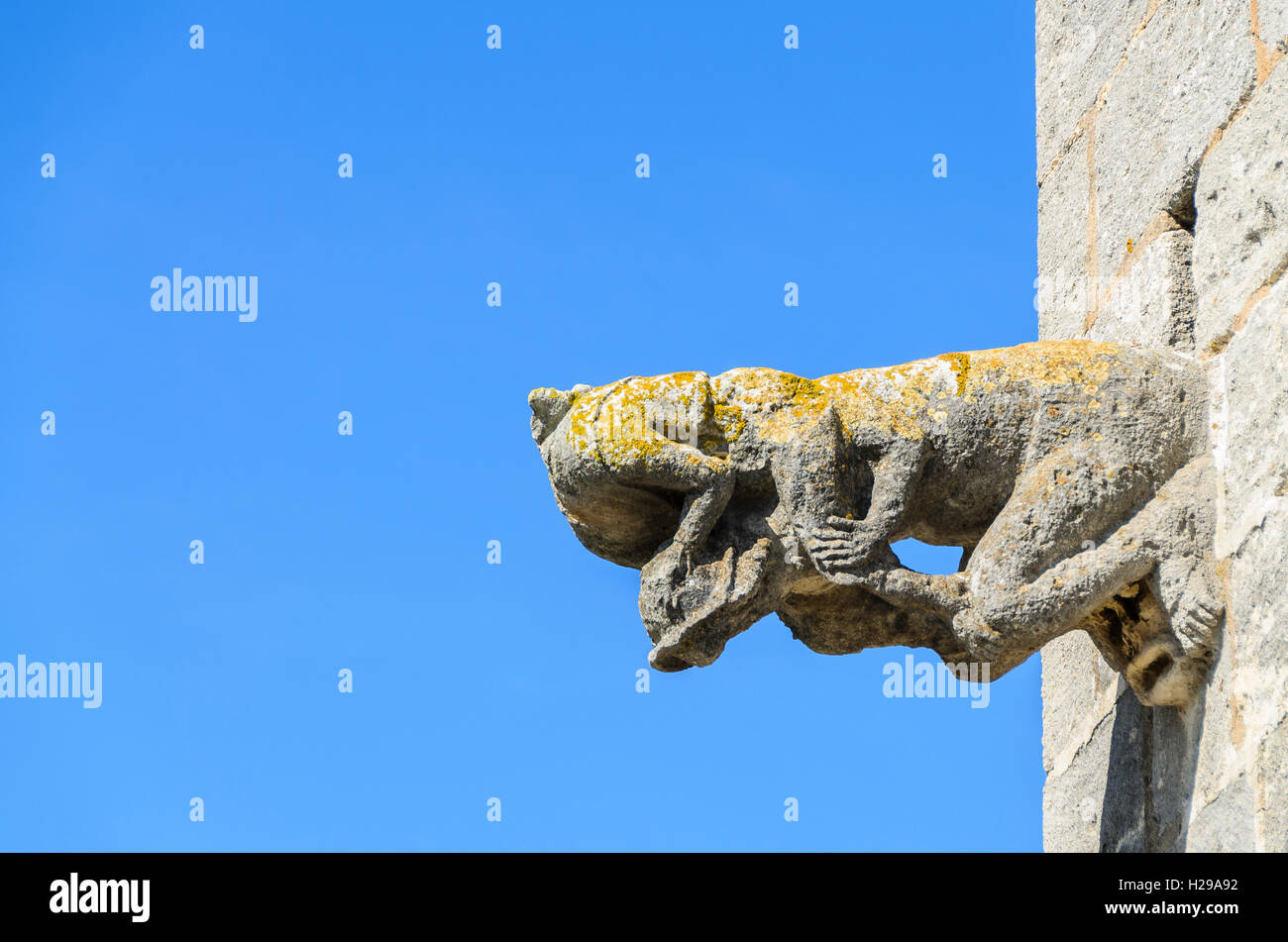 gargouille, Aigues Mortes, remparts, Gard, France Stock Photo