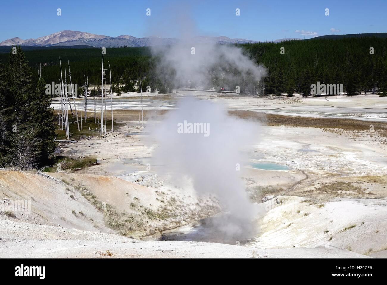 Steam vent, Porcelain basin, Norris Geyser Basin, Yellowstone National Park. fumarole - Stock Image