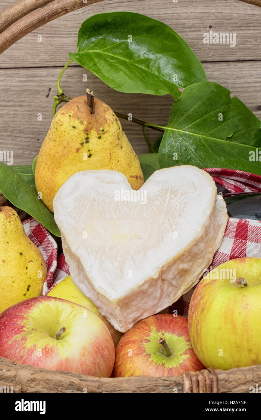 the Neufchatel cheese with Normandy apples - Stock Image