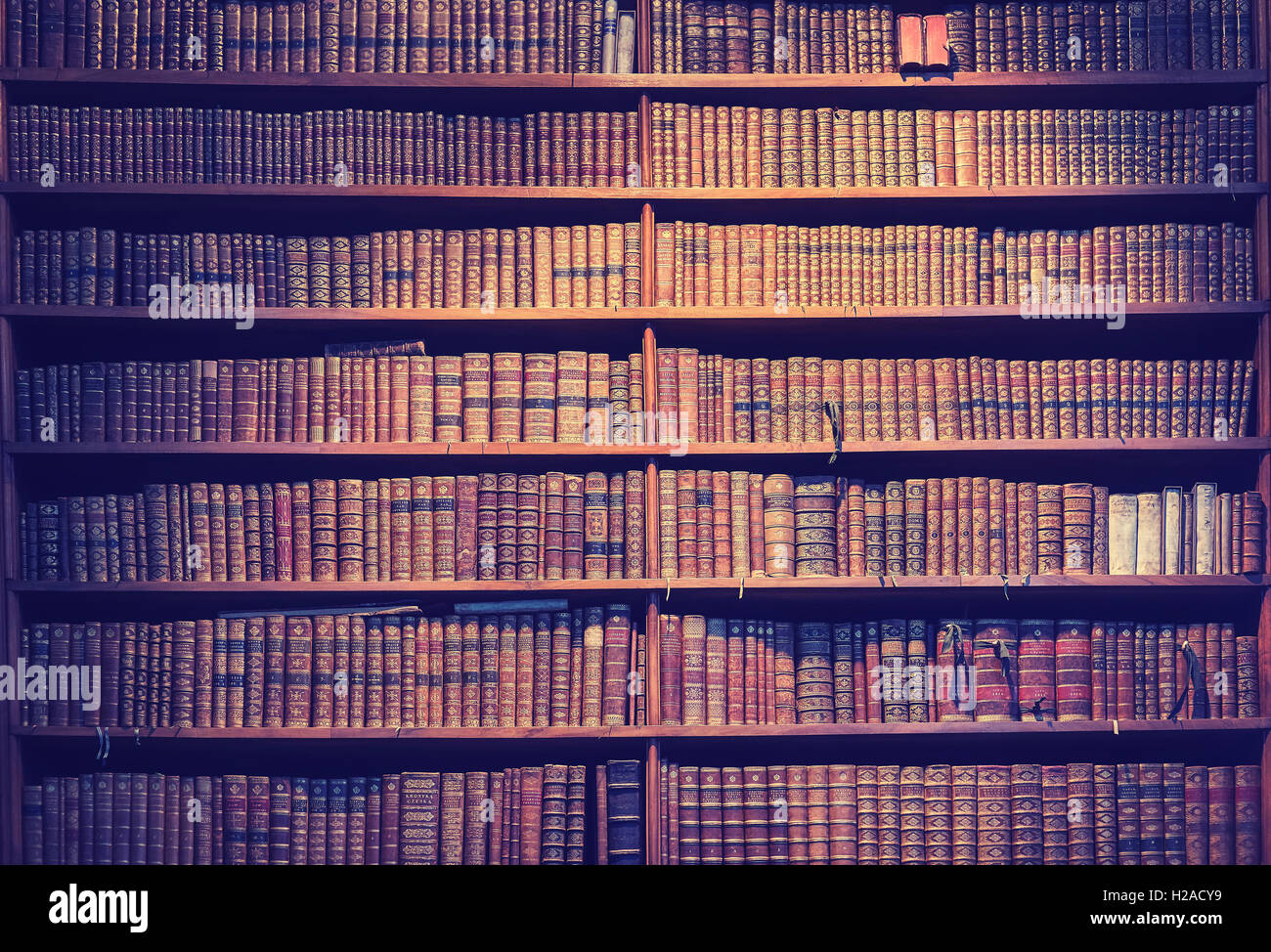Vintage toned old books on wooden shelves, wisdom concept background. - Stock Image