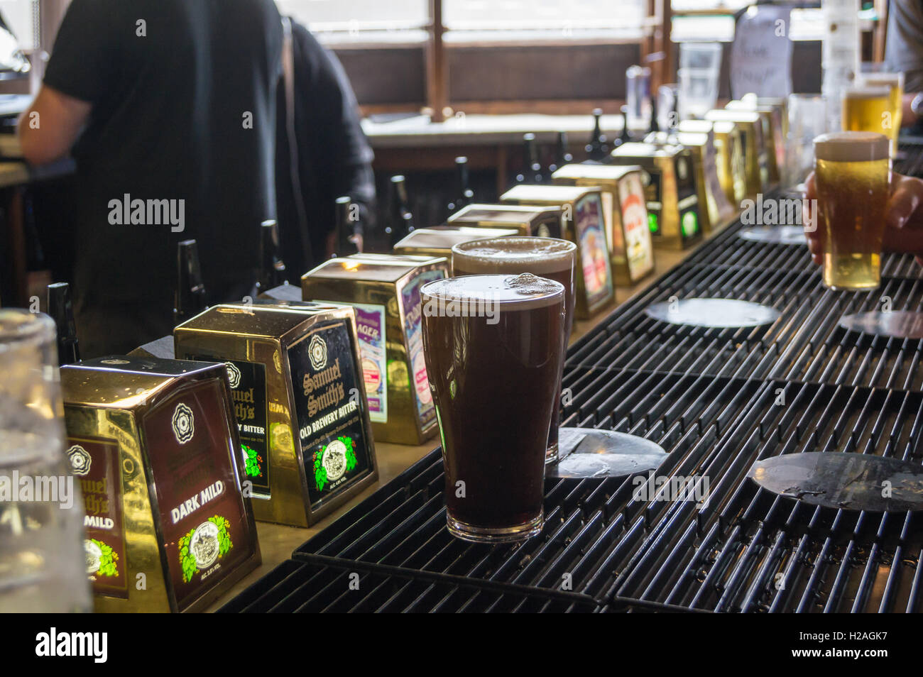 Pints of stout on the bar at  Sam Smith's  Sinclair's Oyster Bar, Cathedral Approach, Manchester, England - Stock Image