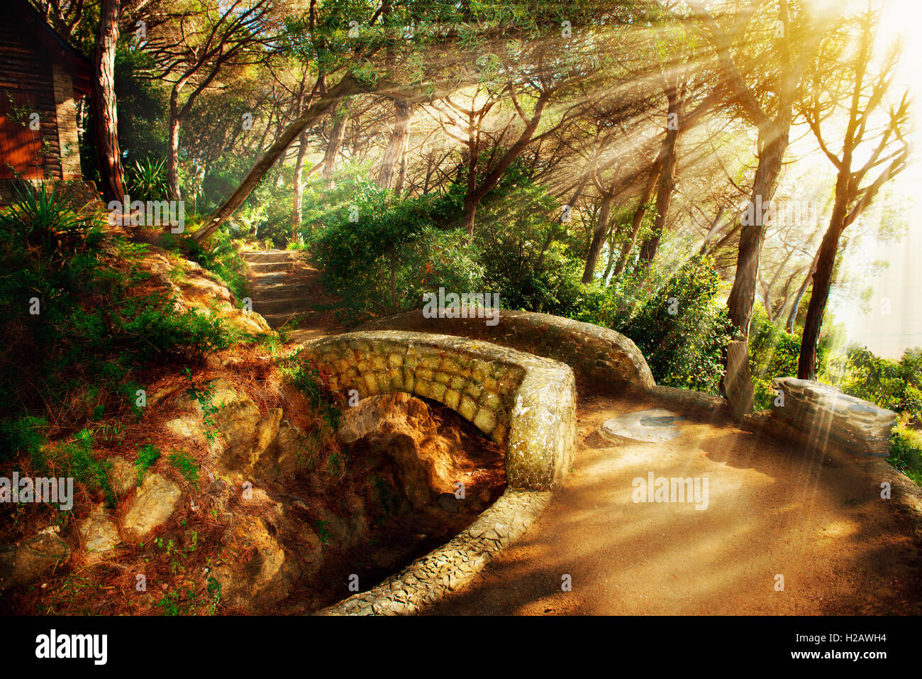 Mystical Park. Old Trees and Ancient Stone Bridge. Pathway - Stock Image