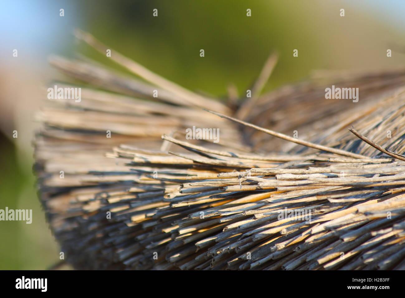 straw umbrella closeup close up - Stock Image