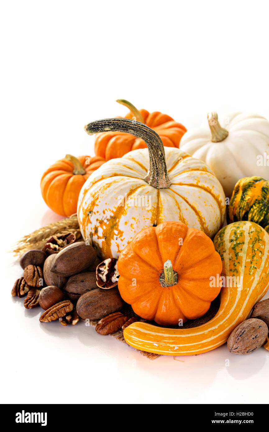 Fall copyspace with decorative pumpkins - Stock Image