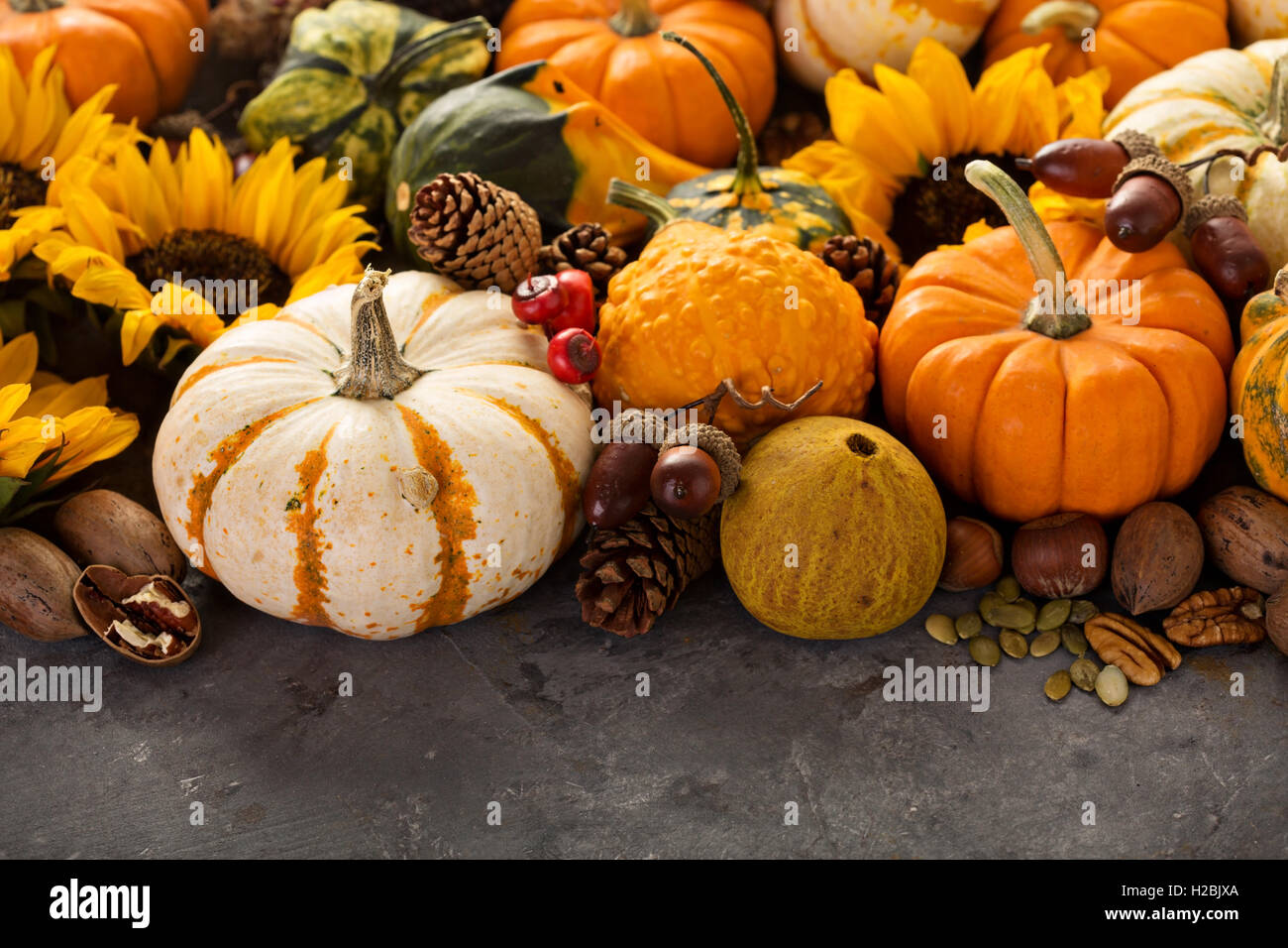 Fall background with pumpkins - Stock Image