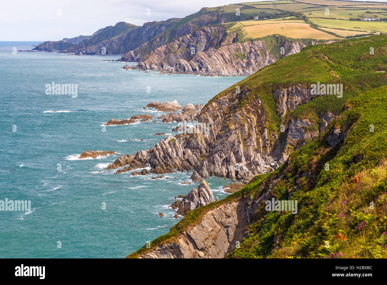 View from Bull Point, looking towards Lee bay. Stock Photo