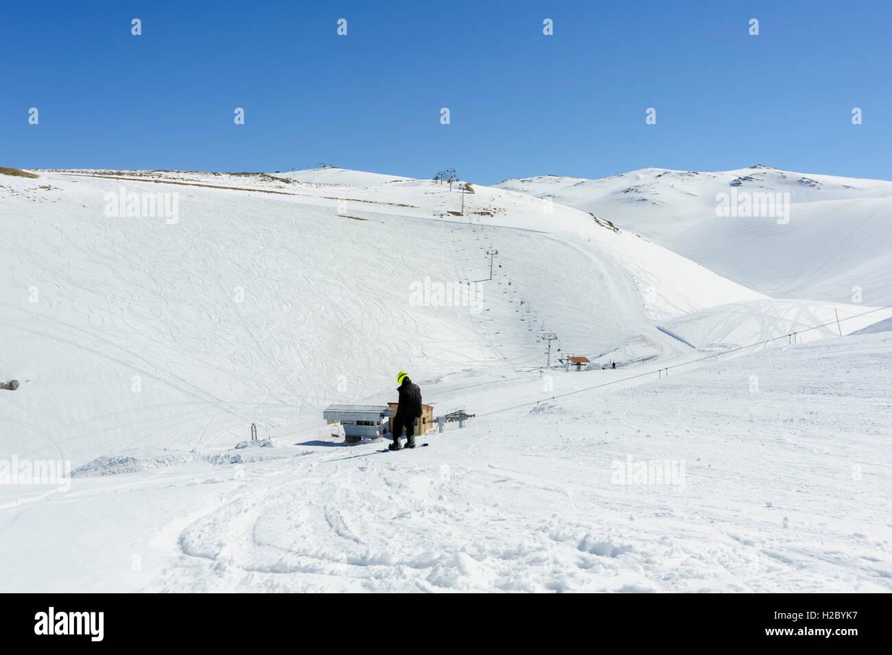 Teen snowboarding, going downhill, Faraya (Mzaar Kfardebian) ski resort, Lebanon - Stock Image
