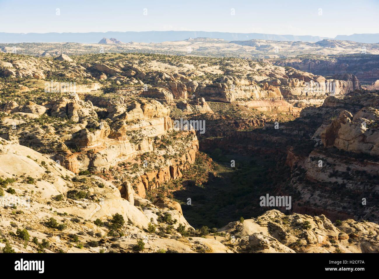 Utah, Grand Staircase-Escalante National Monument, Hell's Backbone, landscape - Stock Image