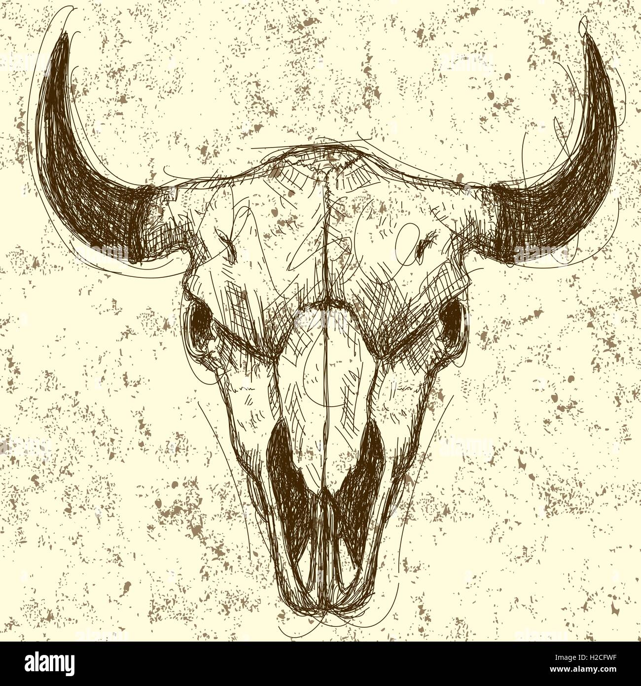 Cow skull Cow skull drawing over an abstract background. - Stock Image