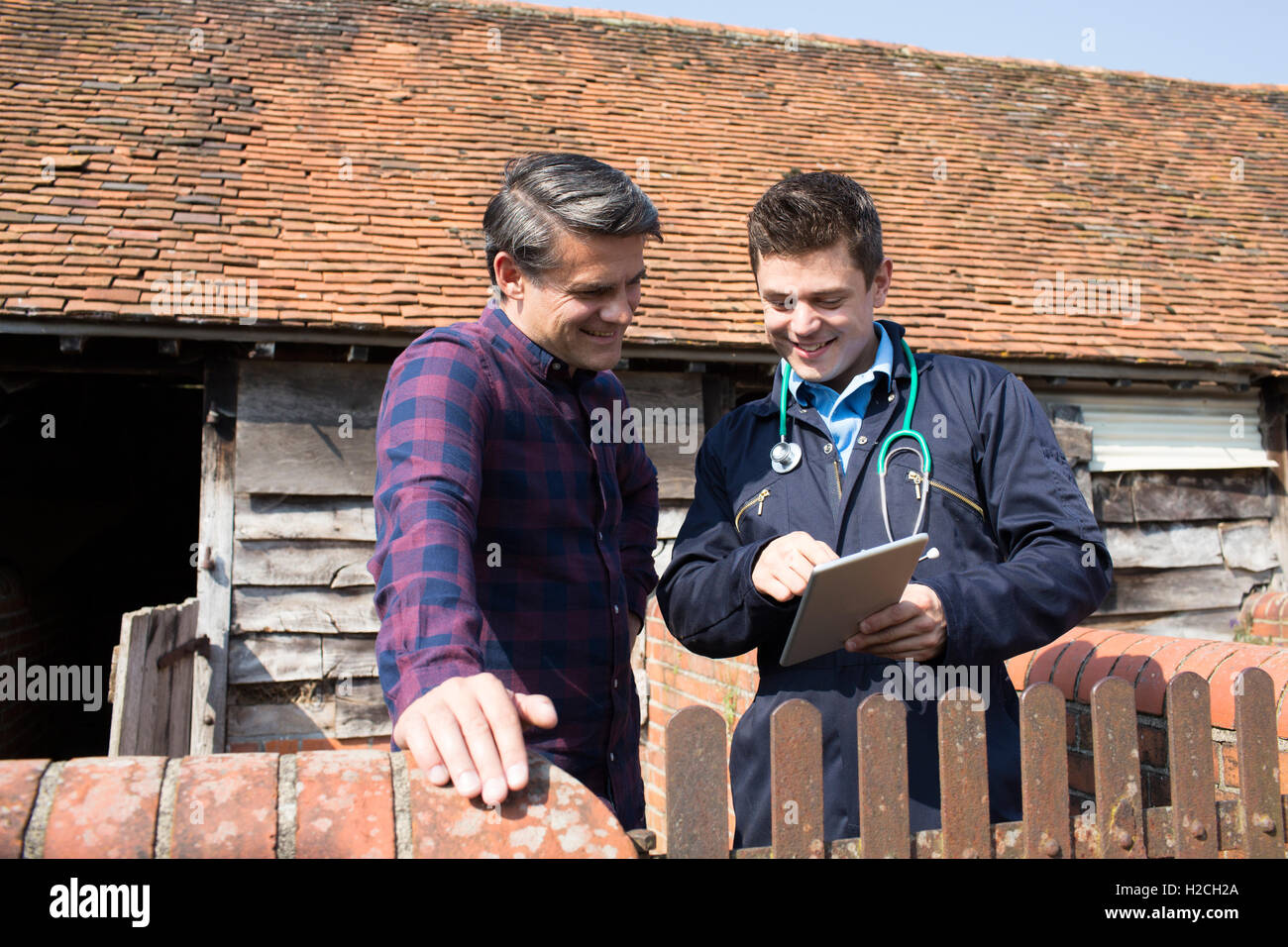 Farmer And Vet Looking At Digital Tablet Together - Stock Image