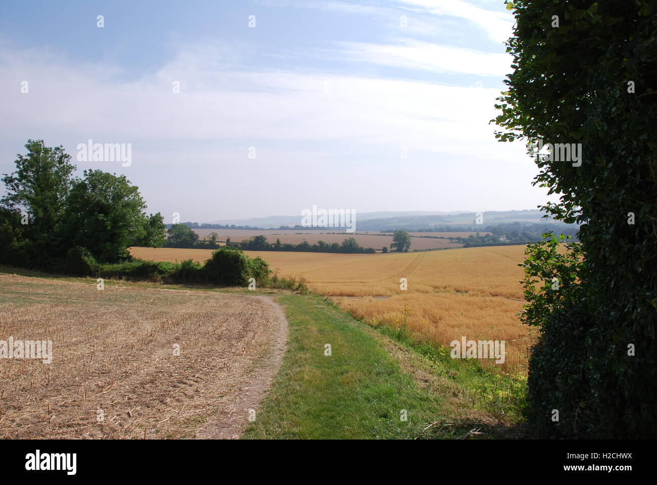 Meon valley view - Stock Image