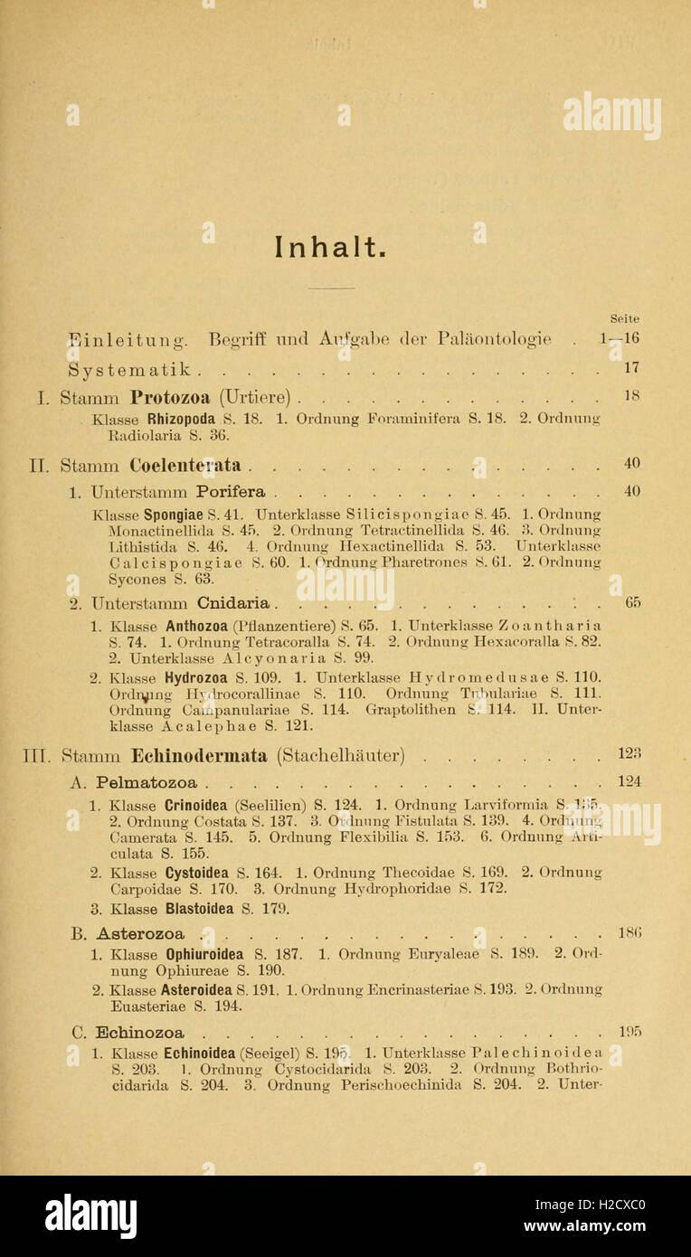 Grundzüge der Paläontologie - Stock Image