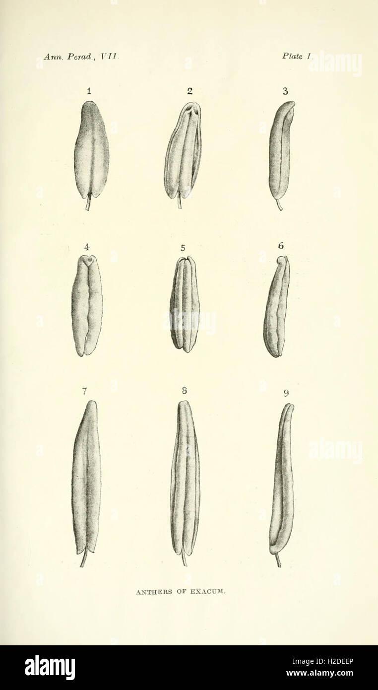 Annals of the Royal Botanic Gardens, Peradeniya Stock Photo