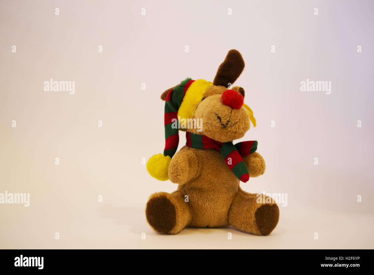 Image of a small doll dog with cute brown color with a small hat and colorful cap in white background. it is cute - Stock Image