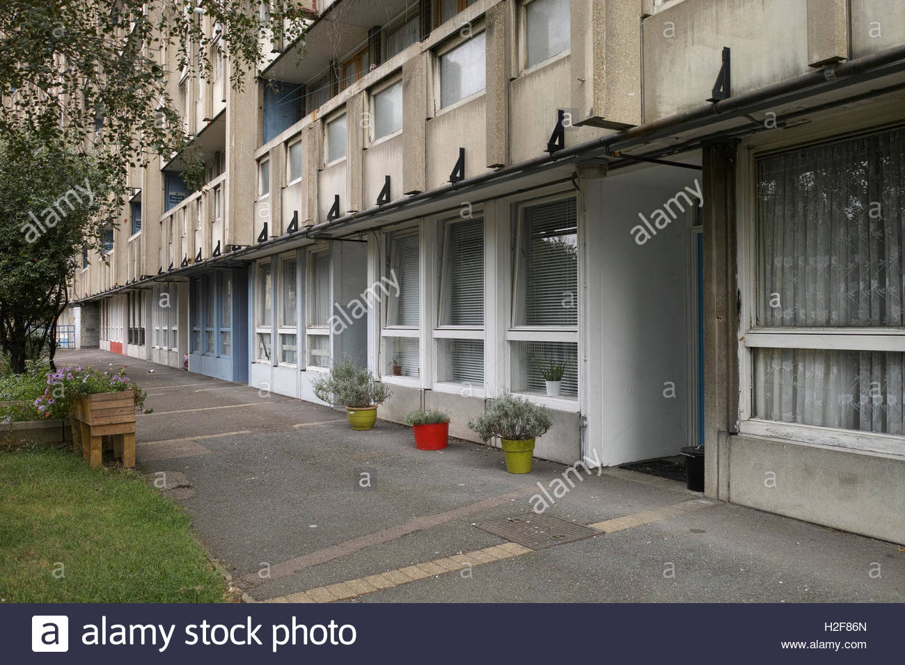 Plant pots outside ground floor flats in Robin Hood Gardens Estate: Poplar, London. Stock Photo
