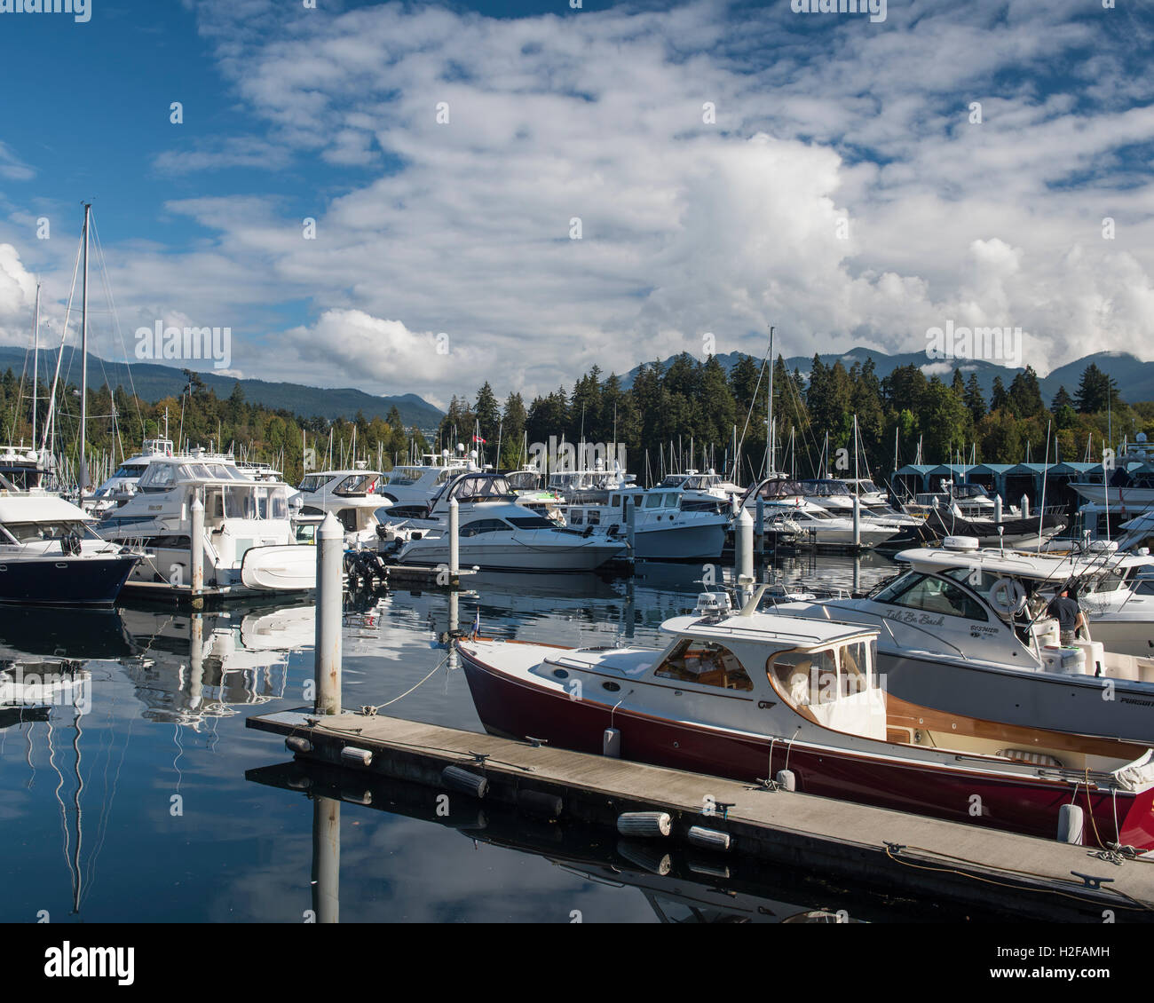 North view of moored boats in Coal Harbour Marina, Vancouver British Columbia. - Stock Image