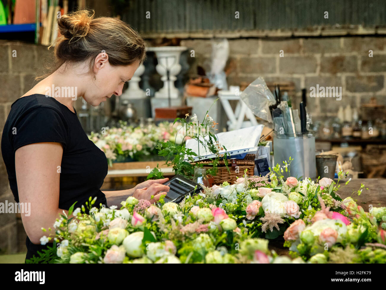 A florist working using a digital tablet by a workench of small flower arrangements. - Stock Image