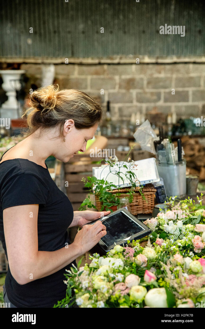 A woman florist using a digital tablet in a workshop. - Stock Image