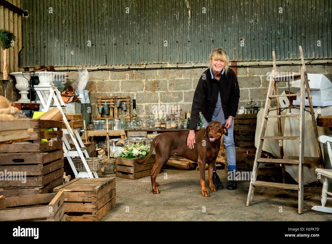 A woman patting a large brown pet dog - Stock Image