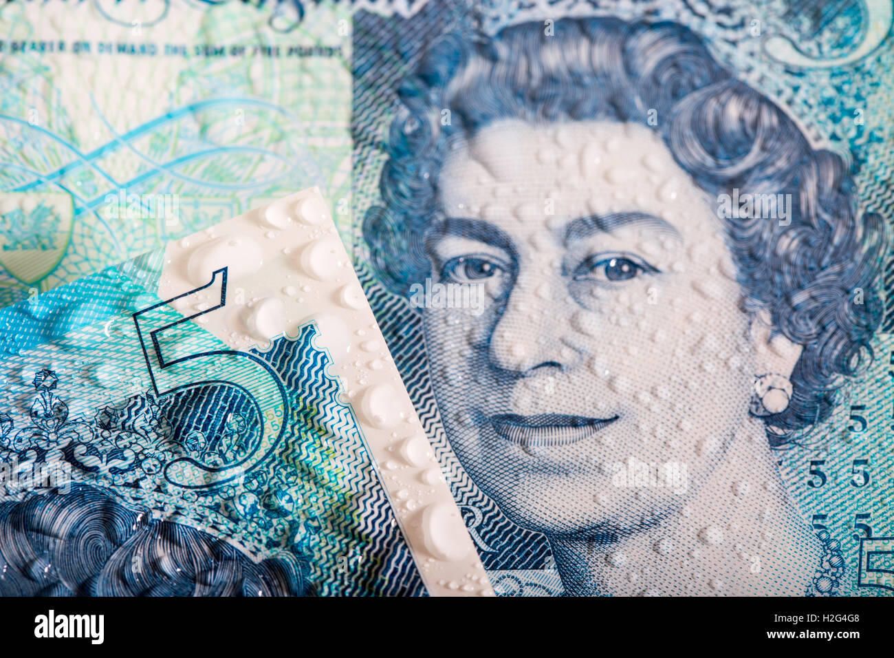 A close up detailed photo of the New waterproof Polymer UK Five Pound Note showing its water resistance - Stock Image