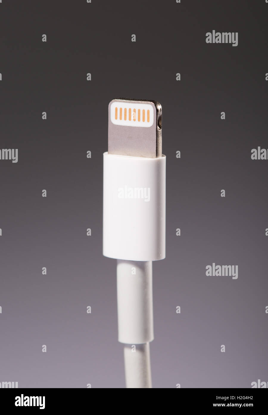 Apple Lightning cable - Stock Image