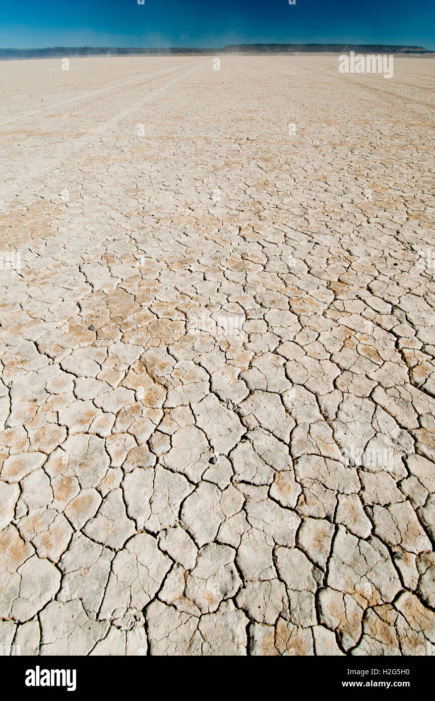 Mud cracks forming a polygonal interconnected network on the bed of Alvord Playa in the Alvord Desert in SE Oregon - Stock Image