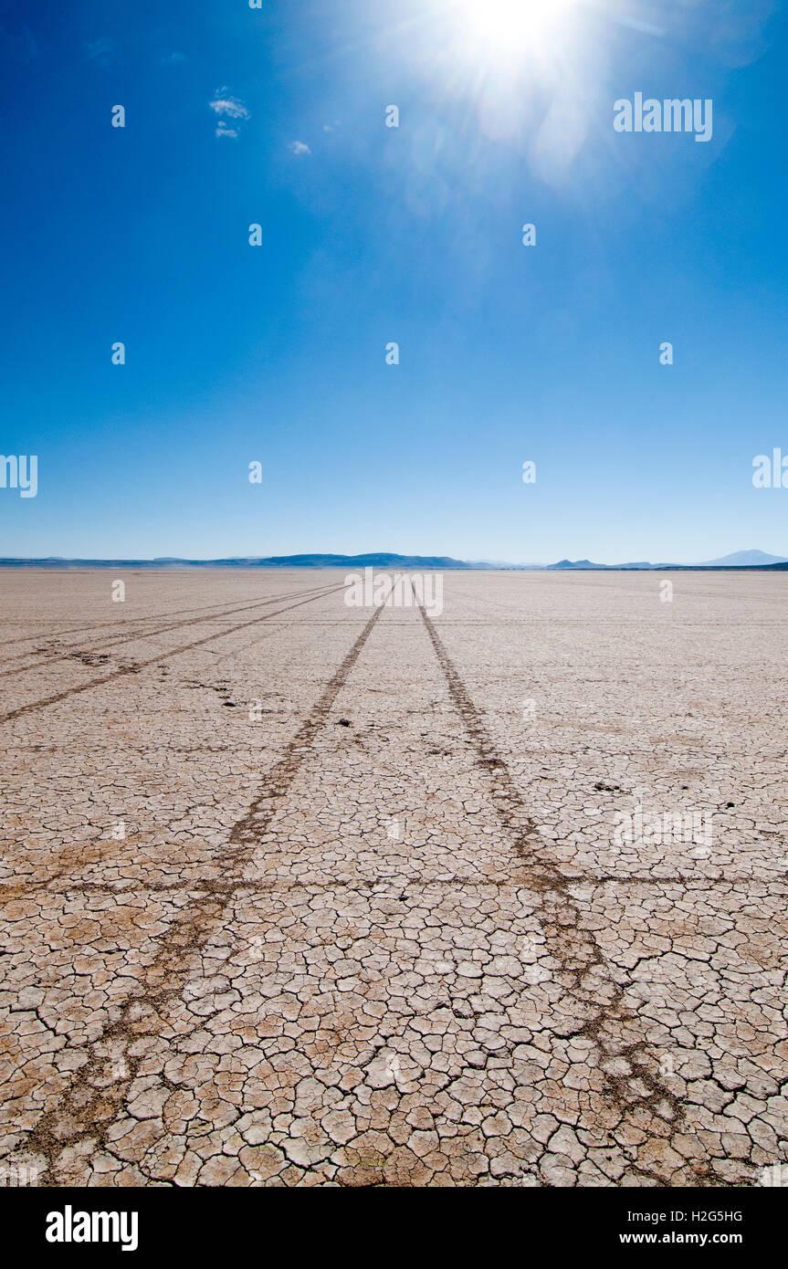 Tire tracks in Alvord 'Lake' (Playa) in the Alvord Desert in southeastern Oregon - Stock Image