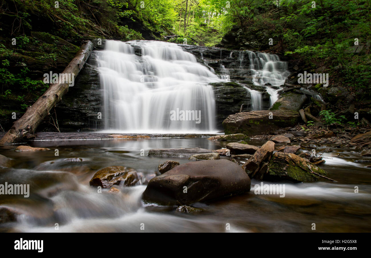 A long exposure of a medium sized waterfall in a lush green summer forest. - Stock Image
