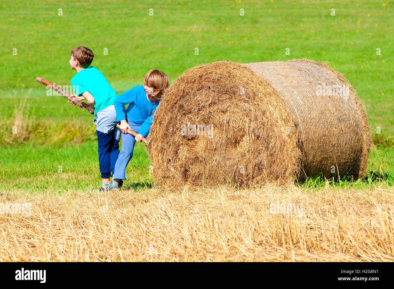 Two Boys Moving Bale of Hay with Stick as a Lever - Stock Image
