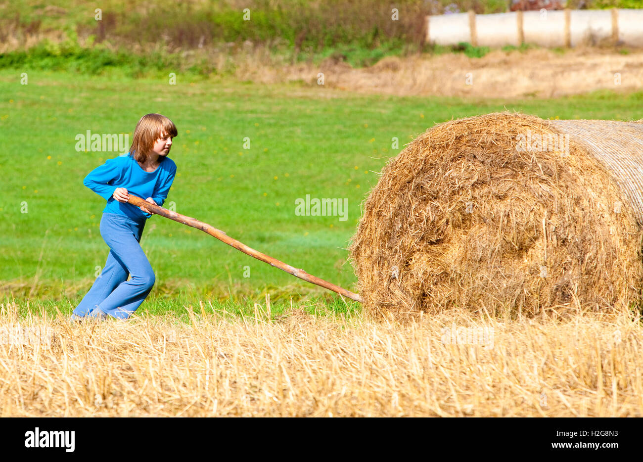 Boy Moving Bale of Hay with Stick as a Lever - Stock Image