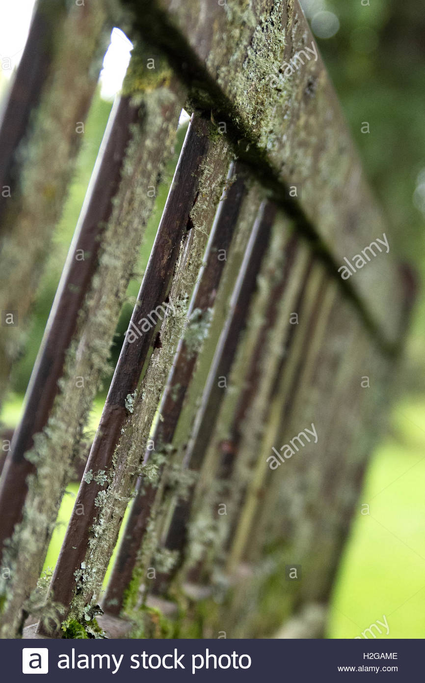 A park bench that has seen better days - Stock Image
