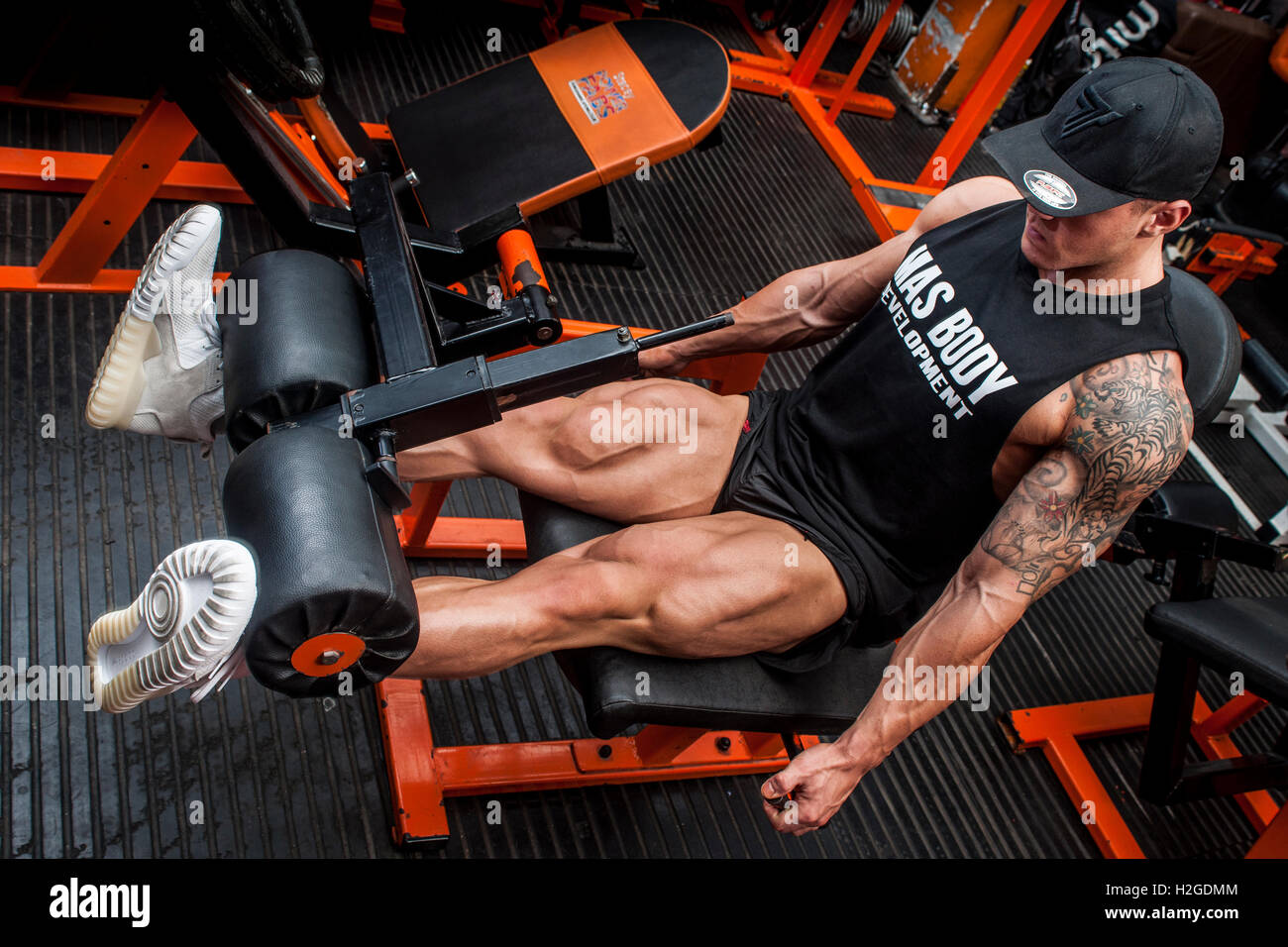male bodybuilder doing leg curl in the gym - Stock Image