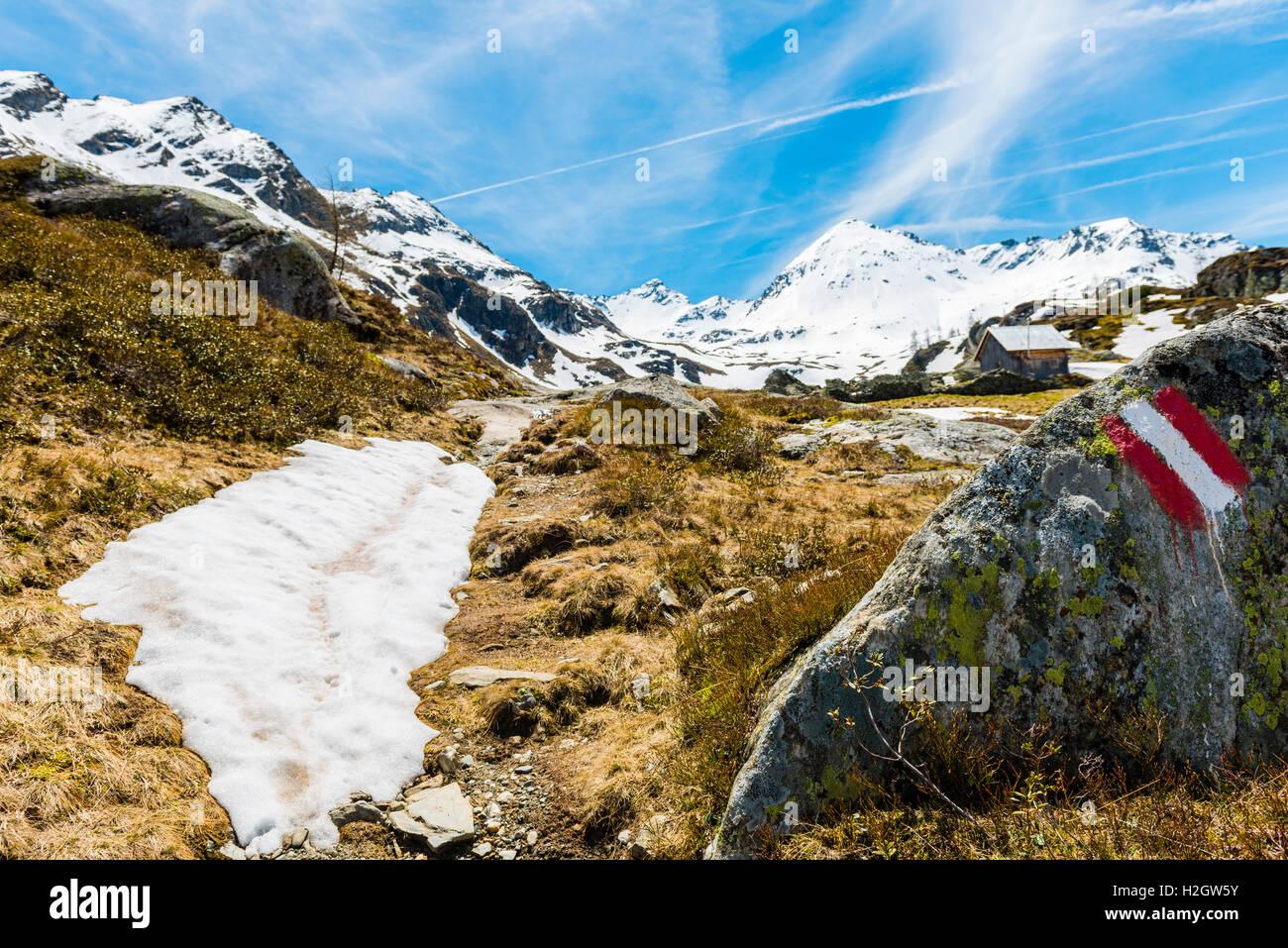 trail background