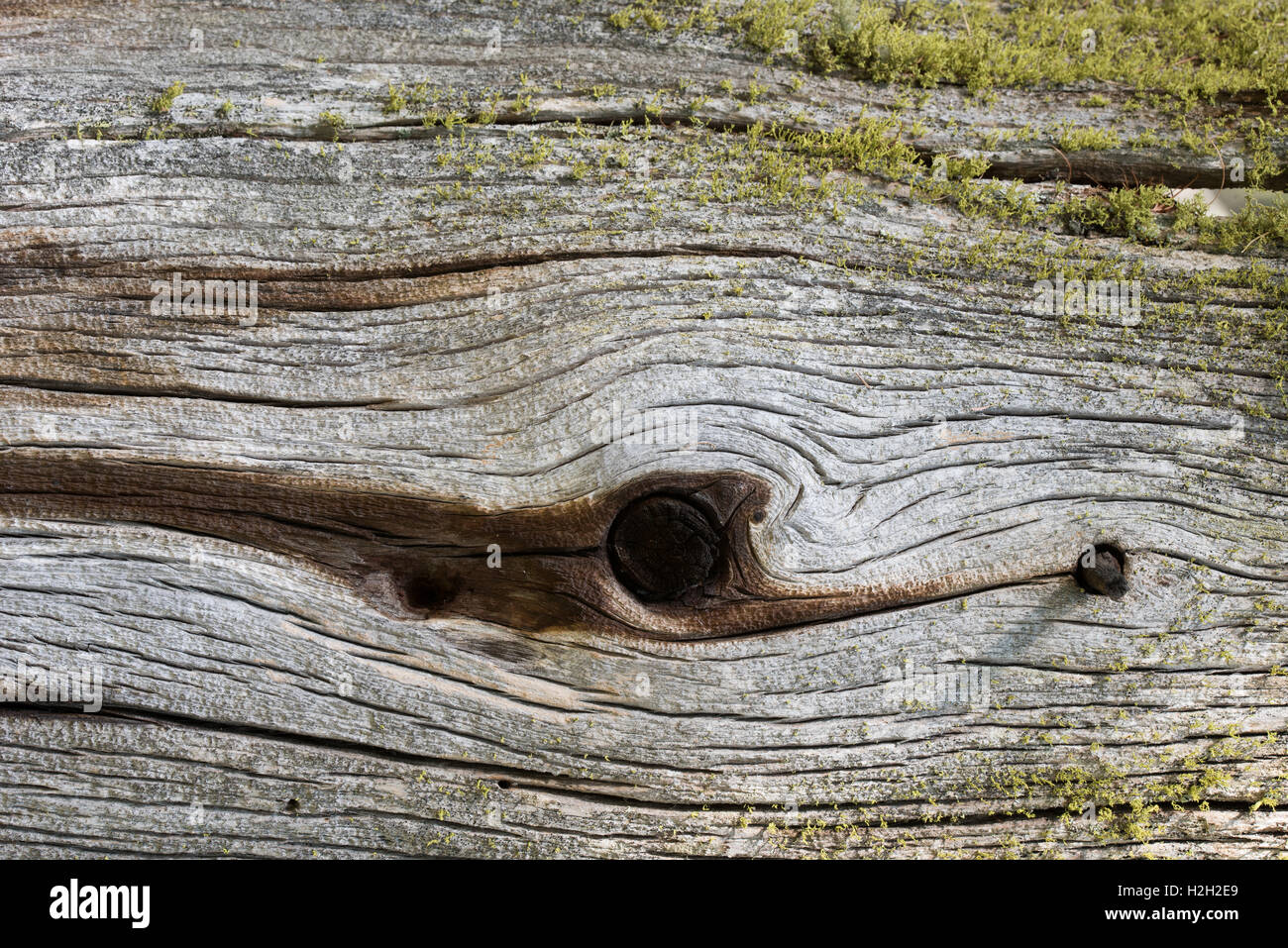 Holz, Detail | wood, detail - Stock Image