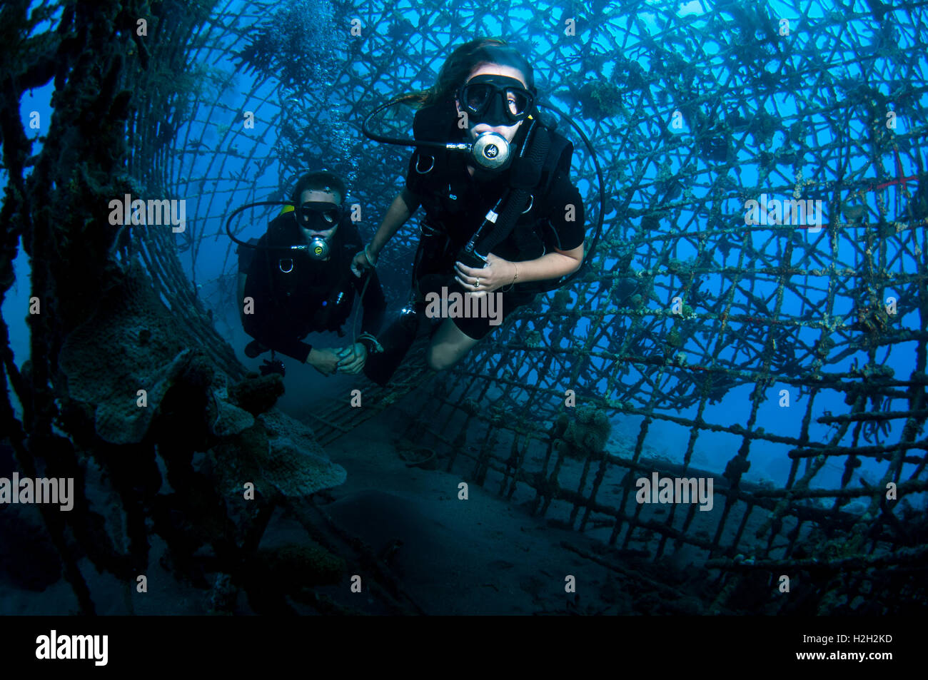 Navy Seals Stock Photos & Navy Seals Stock Images - Alamy
