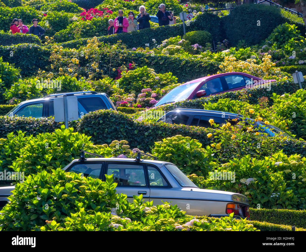 Cars in Lombard street, San Francisco - Stock Image