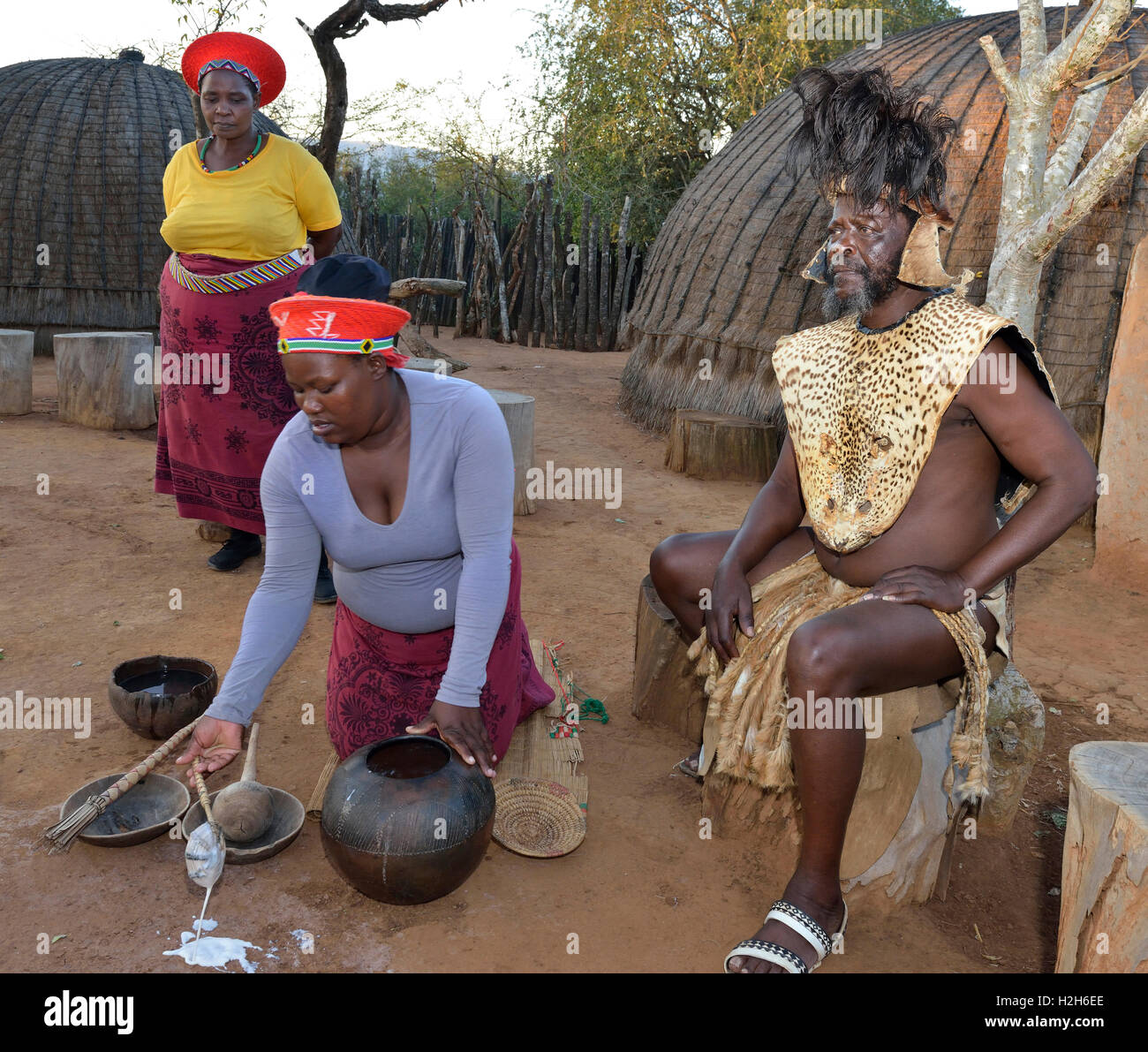 Shakaland Zulu troupe members re-enacting Zulu domestic life - serving amasi (curdled milk),with the Zulu King seated. - Stock Image