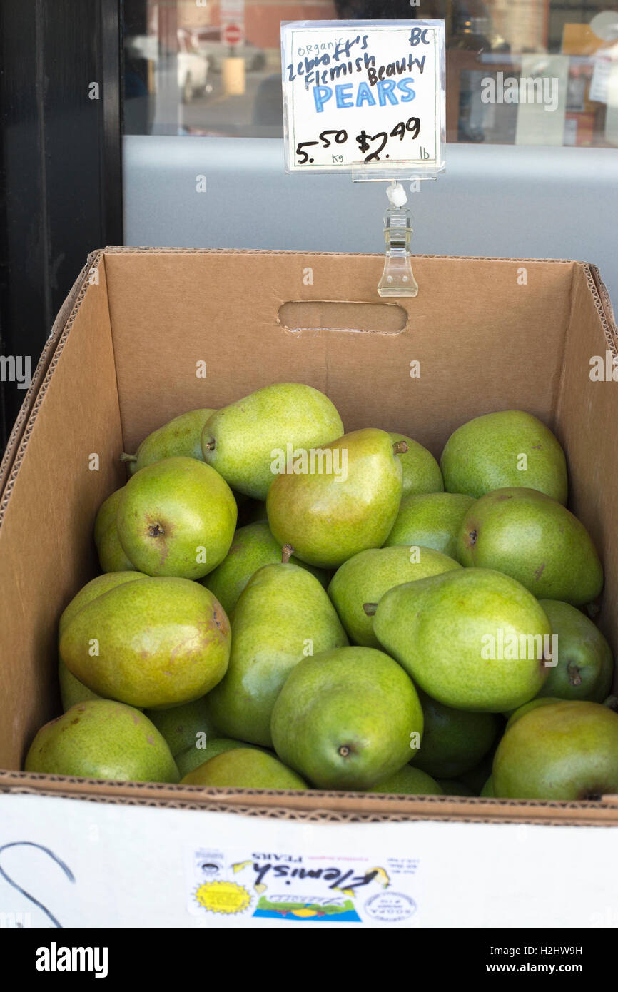 Organic Flemish Beauty heirloom pears grown in British Columbia for sale at Calgary market - Stock Image