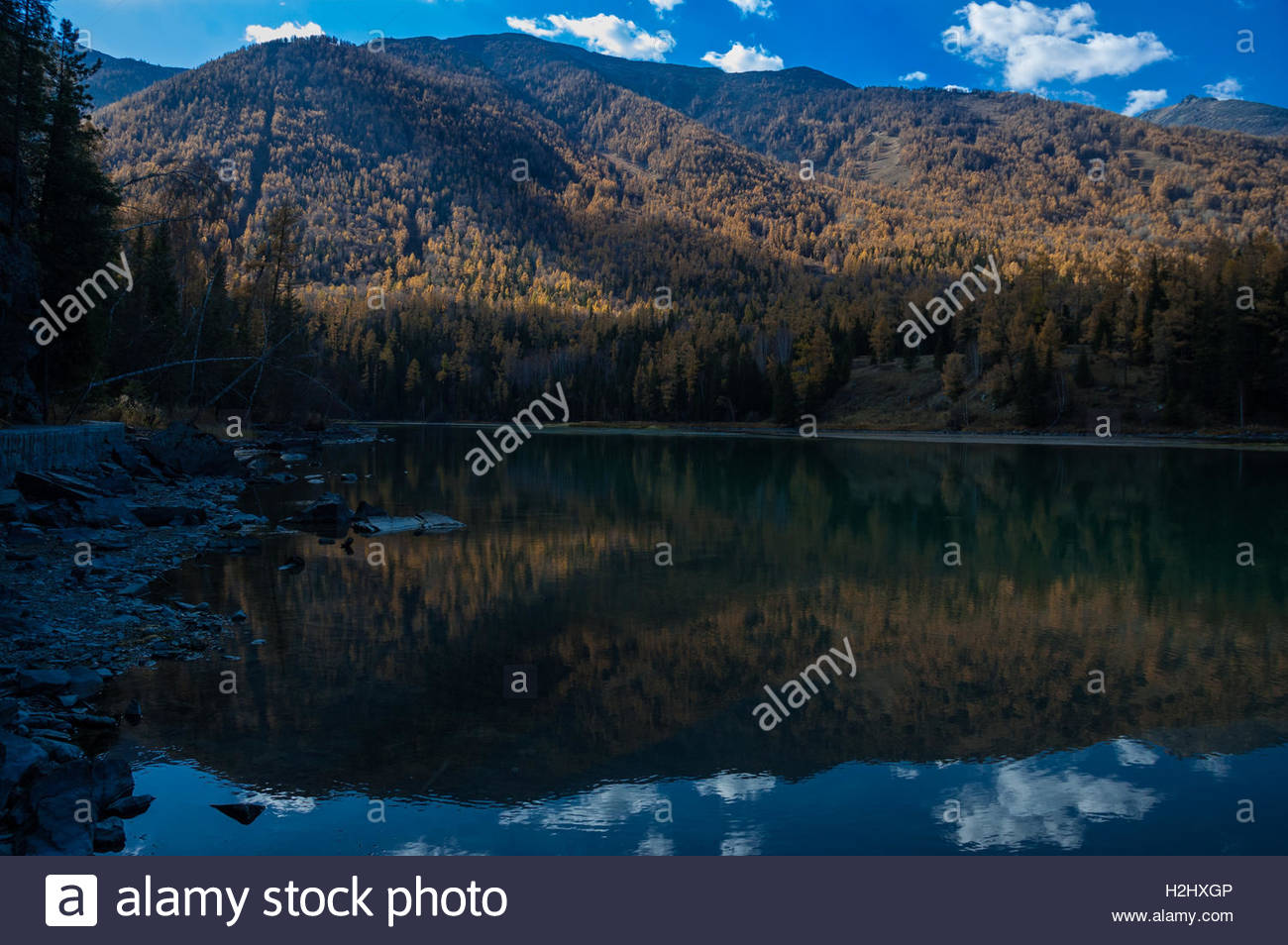 Kanas Lake surrounded by conifer forests and the mountains above. Xinjiang Province China near Russian and Kazakh Stock Photo