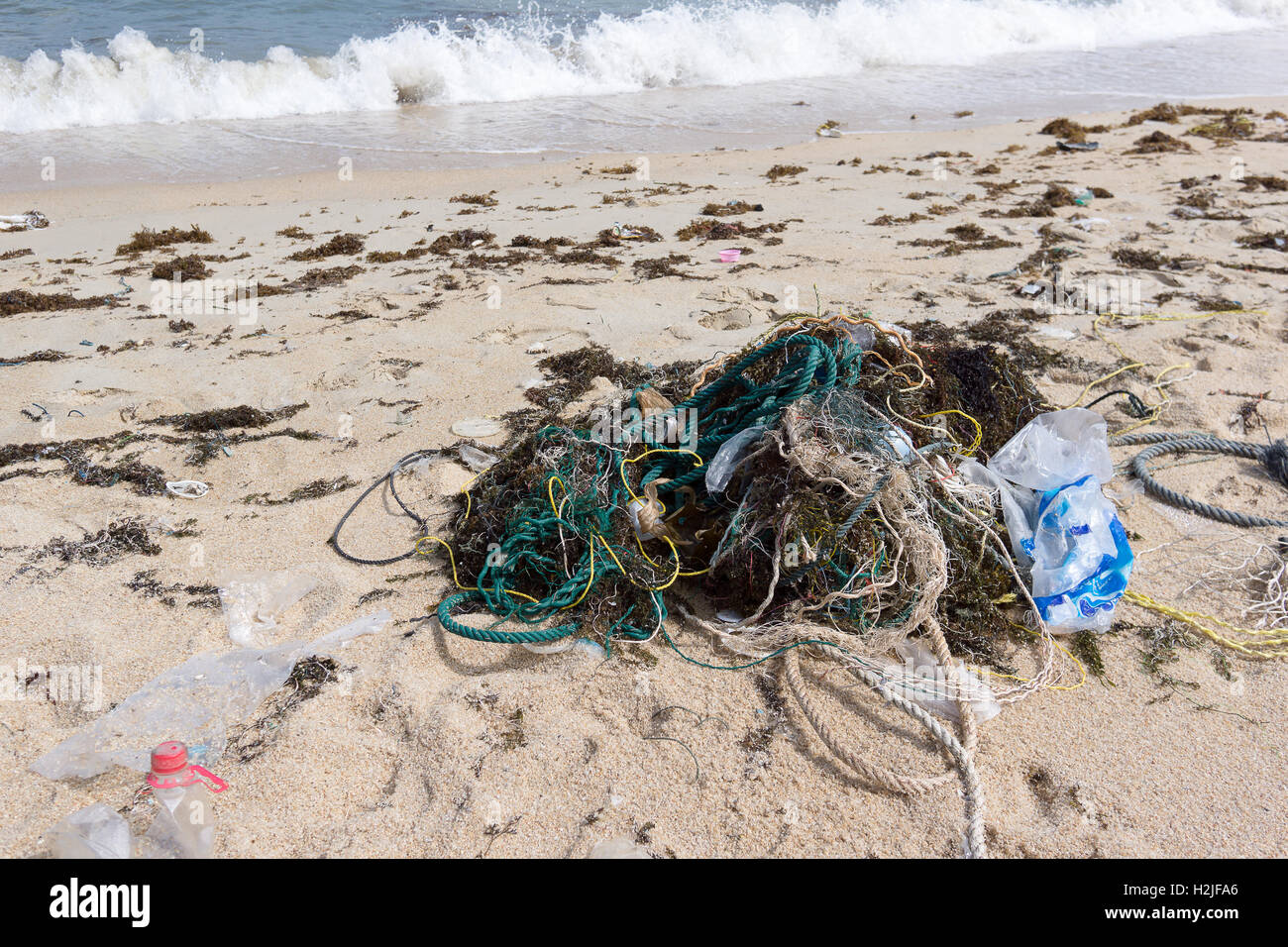 Plastic pollution from the sea on a beach - Stock Image