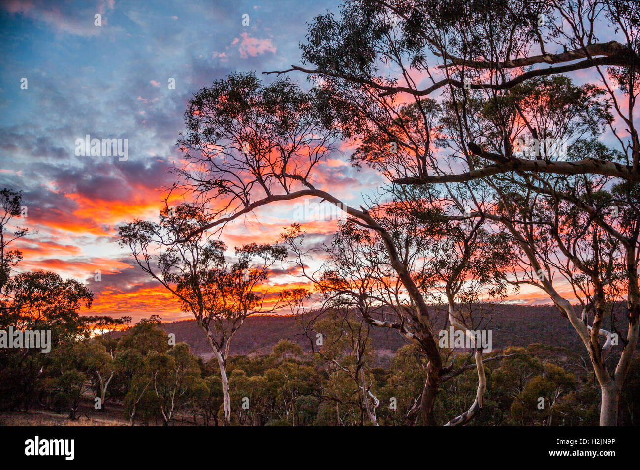 sunrise at Hancock's Lookout, Spencer Gulf, near Wilmington South Australia - Stock Image