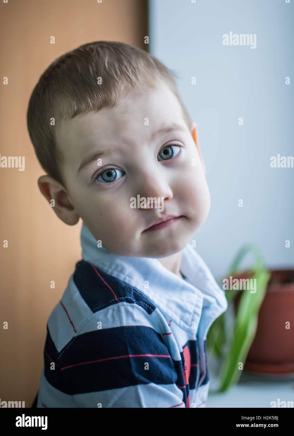 The boy at the window - Stock Image