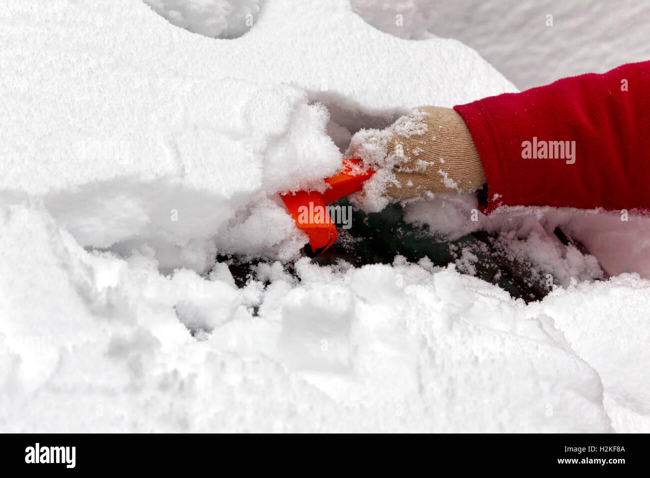 A woman uses an ice scraper to remove snow and ice from her car windscreen in winter. Warminster, Wiltshire, United - Stock Image
