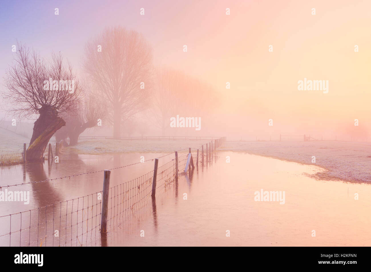 A foggy sunrise in winter along the River Lek in The Netherlands. - Stock Image