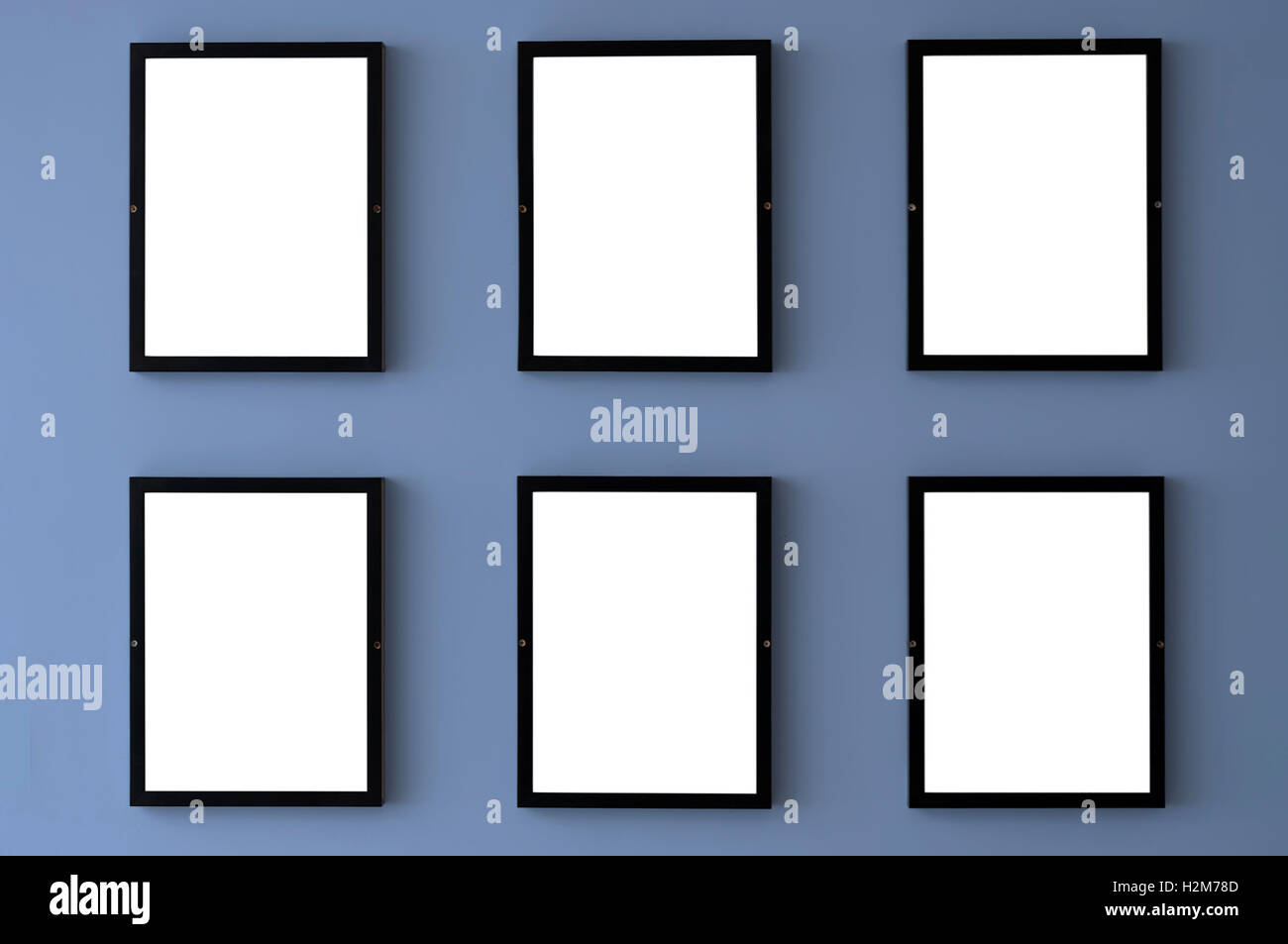 Six blank picture frames hang on a wall with the 2016 pantone color of serenity. - Stock Image