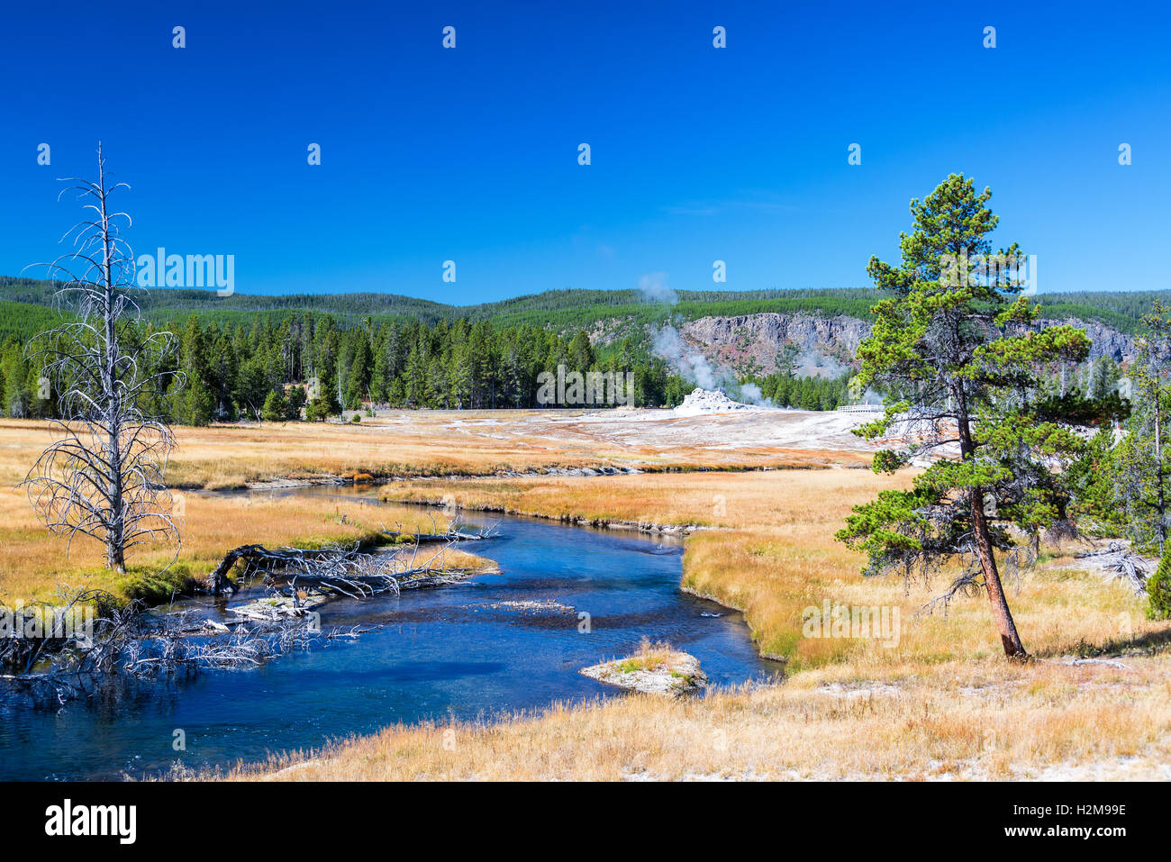 Firehole River running through the Upper Geyser Basin in Yellowstone National Park - Stock Image